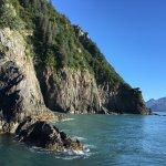 Photo de Resurrection Bay