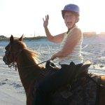 Happy Trails Walking Horses Photo