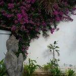 Foto de Casa Asia