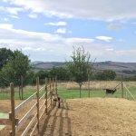 Agriturismo Ristorante La Fonte Foto