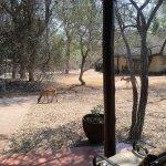 Foto N'kaya Lodge