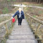 Way up to the highest dunes os Holland