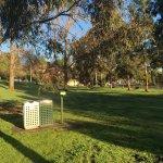 Grattan Gardens