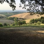 Photo of IL Castellazzo