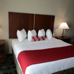 King Guest Rooms Available
