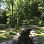 The Japanese Garden was very peaceful