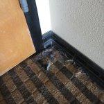 slidt og beskidt tæppe
