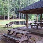 Bild från Foxhunt at Sapphire Valley