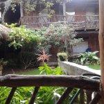 Cabanas Colina De Los Ruisenores Photo