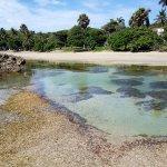 Photo of Cofresi Beach