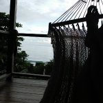 View from the Hammock in the Monkey Room