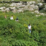 Photo during one of our walks at Mgarr ix-Xini