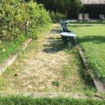 campo da bocce inutilizzabile sporco e pieno di insetti!