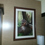 Foto de Akwesasne Mohawk Casino Resort
