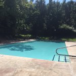 Beautiful 3 -4 foot pool