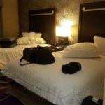 Foto de Hampton Inn & Suites Lansing West