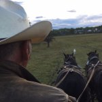 Evening chuck wagon ride around the property