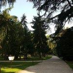 Villa dei Cedri Foto