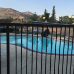 Photo of Comfort Inn & Suites Sequoia Kings Canyon
