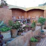 Roof garden/terrace