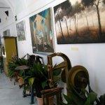 Foto de Museo de la Piel de Ubrique