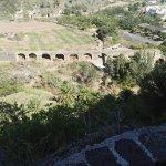 Jardin Canario Foto
