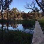 Hidden Grove Retreat