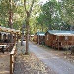 Photo de Camping La Roseraie