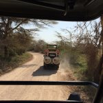 A Trusted Tour Operator -- Amboseli game drive with KITS