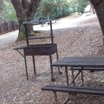 The picnic table, fire ring and BBQ area.