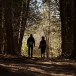 Hikers in a wooded area