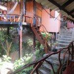 Photo de Shambhala Bungalow Village