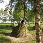Illiniwek Forest Preserve Picture