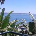 Foto de Hotel Solar Palmeiras