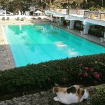 Nyali International Beach Hotel Foto
