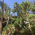 Foto de Hotel Parque Tropical