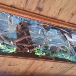 décoration du plafond du restaurant