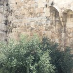 Foto de Museo Torre de David
