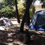 Photo of Bobs Pine Grove Campground