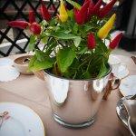 Foto de Hotel de Orangerie