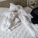 Hotel Ambassador - Zlatá husa Photo