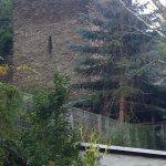 Landgasthof Zum Weißen Schwanen Foto