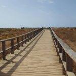 Alvor Boardwalk