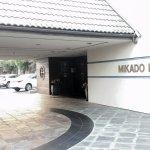 Mikado Main Driveway