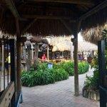 Monty's Coconut Grove Foto