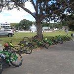 Bike to Mission Bay
