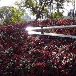 Relógio das Flores