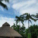 Flamingo Vallarta Hotel & Marina Foto