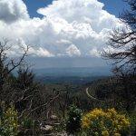 Foto de Lincoln National Forest