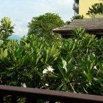 Panwa Beach Resort, Phuket Foto